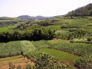 sichuan_landscape
